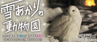 asahikawa_13.jpg
