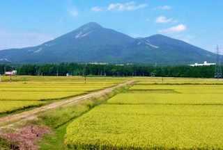 fukushima_03.jpg