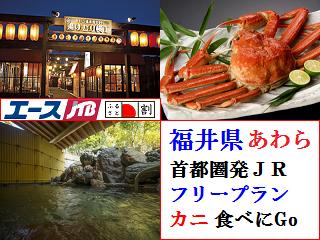 ishikawa_51.png