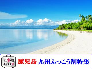 kagoshima_fukkouwari2807.png