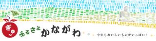 kanagawa_05.png