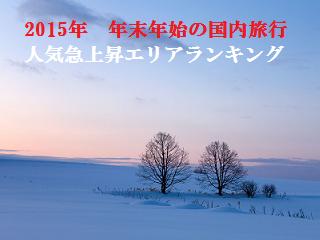 nenshi_rank.png