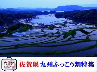 saga_fukkouwari2807.png