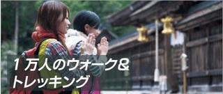 wakayama_41.jpg