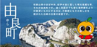 wakayama_42.png